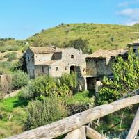 Il profumo di rinascita di Borgo Pantano